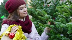 happy woman buying christmas tree in market stock footage video