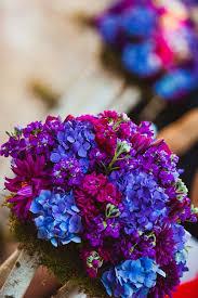 blue and purple flowers best 25 purple flowers ideas on pianese flower