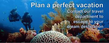 Colorado Snorkeling images One world dive travel denver colorado offers padi group png