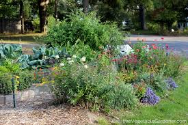 creative vegetable gardener front yard garden makeover creative