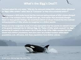 killer whales the marine detective