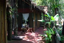 photo gallery khao sok tree house visual impression of what we offer