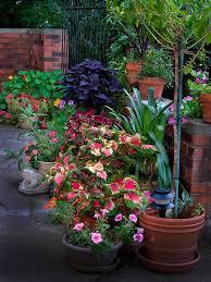 5001 best garden glory images on pinterest gardening container