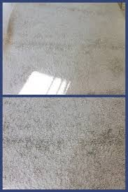 how to clean rugs diy cleaning that shag rug inane musings