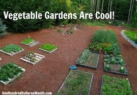 kitchen gardening ideas mavis butterfield backyard garden plot pictures week 27 of 52