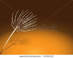 Earthy Orange Composition Earthy Tones Dandelion Motif Stock Vector 111067127