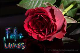 imagenes de feliz inicio de semana con rosas banco de imágenes postales con mensajes para todos los días de la