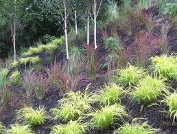 best 25 hillside landscaping ideas on pinterest backyard hill