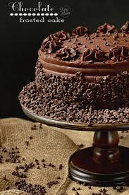 dark chocolate frosted yellow cake with raspberry preserves
