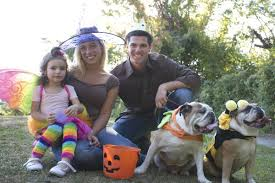 Family Dog Halloween Costumes Ultimate Dog Halloween Costume Guide American Kennel Club