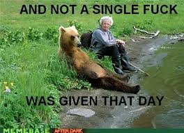 Fuck It Meme - and not a single fuck was given that day funny bear meme picture