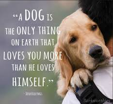 Love Is Unconditional Quote by There U0027s No Such Thing As Unconditional Love Weekly Columns