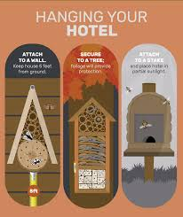 Design Your Own Home And Garden by Attract Beneficial Insects And Bees With Your Own Insect Hotel