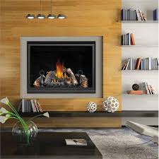 Direct Vent Fireplace Insert by Hd46 Direct Vent Gas Fireplace From Napoleon Fireplaces