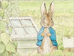 rabbit poster beatrix potter rabbit poster posterlounge