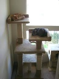 Free Diy Cat Tree Plans by Building Simple Cat Tree Build Your Own Cat Tree House Diy Cat