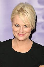 hair color 201 awesome amy poehler hairstyles extension with hair color 2017