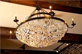 Abalone Shell Chandelier Abalone Shell Chandelier Inspiration Home Designs Shell