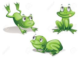 13215985 illustration of three frogs on white stock illustration