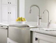 Moen Kleo Kitchen Faucet Fresh Lemons And Limes With The Kleo Kitchen Faucet Flowers