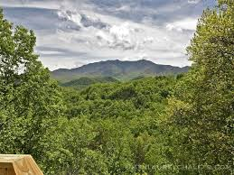 Cheap 1 Bedroom Cabins In Gatlinburg Tn Old Log Cabins Sale Single Bedroom House Plans Indian Style