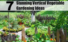 vegetable gardening diy