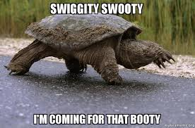 Turtle Meme - swiggity swooty i m coming for that booty swiggity swooty snapping