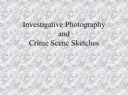 the paper trail case files worksheets notes and sketches ppt