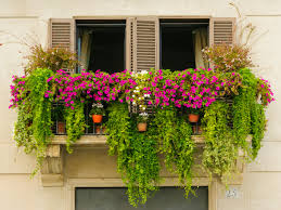 Urban Garden Room - urban gardening streamrr com