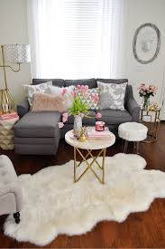 simple small living room decorating idea gorgeous