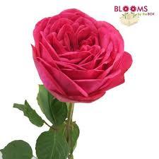Wedding Flowers Roses Pink Flowers U2013 Light U0026 Pink Wedding Flowers
