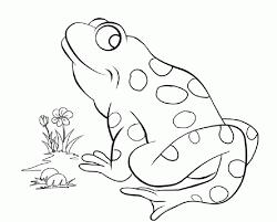 frog coloring kermit frog coloring frog