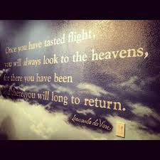 skydiving quote i look at the sky so differently now so true
