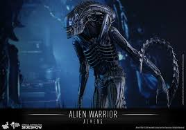 aliens alien warrior sixth scale figure by toys sideshow