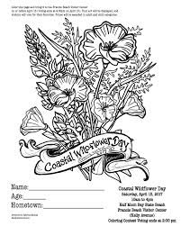 wildflower coloring pages good items similar to letter p coloring