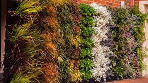 How To Make Vertical Garden Wall - the easiest diy vertical garden for your home