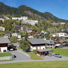 swissfineproperties offers la tour de peilz offers luxury and swissfineproperties offers you leysin appartements premium for sale