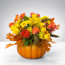 thanksgiving pumpkin power by bloomnation or a orange vase will be