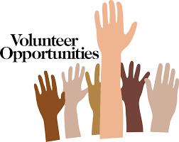Best Volunteer Work For Resume by Volunteer Resume Sample