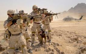 belgian shepherd us army u s army black hawk helicopter off loads personnel as us navy