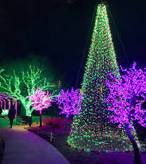 christmas outdoor lights at lowest prices cheekwood home facebook