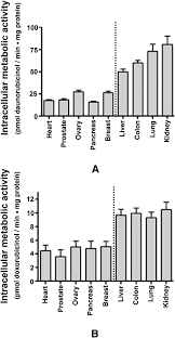 a correlation between cytotoxicity and reductase mediated