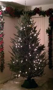 how to hang lights on a christmas tree hanging christmas tree lights vertically image titled hang lights on