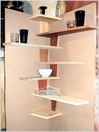kitchen cabinet shelf organizer tall corner unit cupboard shelves