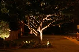 Outdoor Water Features With Lights by Accentuate Your Trees Landscape And Water Feature With Memphis