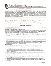 Best Resume It Professional by Impressive Design Ideas Example Of Professional Resume 9 Free It