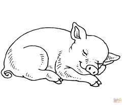 sleeping baby pig coloring page free printable coloring pages