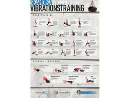 Esszimmerst Le Neu Ebay Skandika übungsposter Home Vibration Plate Din A1