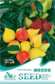 cheap ornamental pepper plant find ornamental pepper plant deals