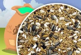 carjon seeds parakeet mixes colonel u0027s parakeet 20kg 15 50